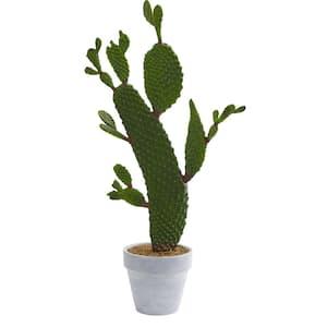 27 in. Indoor Cactus Artificial Plant