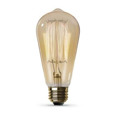 40-Watt ST19 Dimmable Incandescent Amber Glass Vintage Edison Light Bulb with Cage Filament Soft White