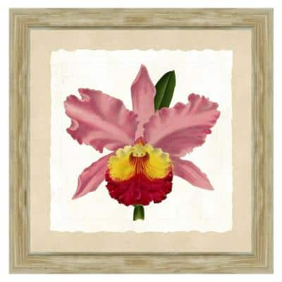 """24 in. x 24 in. Full Size """"Pink orchid"""" Framed Archival Paper Wall Art"""