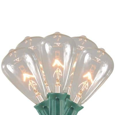 10-Light Clear Edison Style Glass Christmas Light Set with 9 ft. Green Wire
