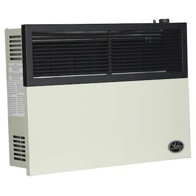 17,000 BTU Direct Vent Natural Gas Heater