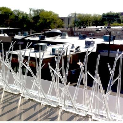 100 ft. Plastic Bird Spikes