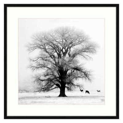 Winter's Morning Fog IV Black Frame Photography Wall Art 40 in. x 40 in.