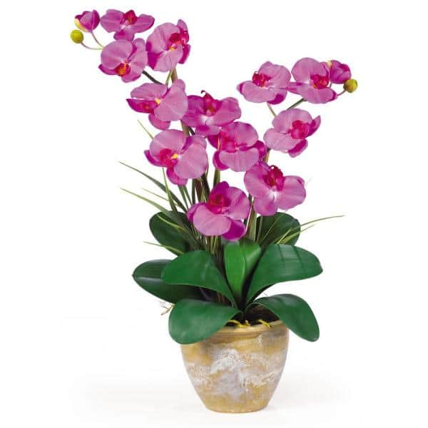 Nearly Natural 25 In Double Phalaenopsis Silk Orchid Flower Arrangement In Orchid 1026 Or The Home Depot