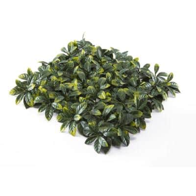 """20"""" x 20"""" Yellow Tip Osmanthus Leaves-Artificial Boxwood Hedges, Living Wall Panels (12 pcs)"""
