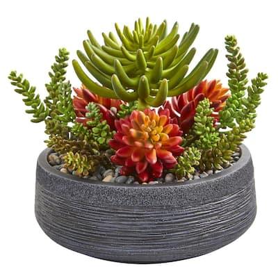 Indoor 12 Succulent Garden Artificial Plant in Bowl