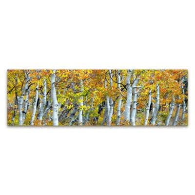 Aspen Tree Panoramic by Colossal Images Canvas Wall Art 18 in. x 58 in.