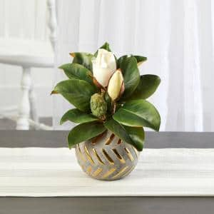 12 in. Magnolia Artificial Plant in Planter with Gold Trimming