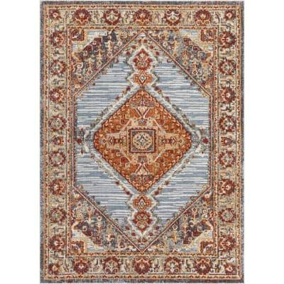 Transitional Oriental 5 X 7 Area Rugs Rugs The Home Depot