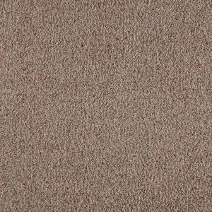 Lifeproof With Petproof Technology Collinger Ii Color Dorian Textured 12 Ft Carpet 0717d 32 12 The Home Depot