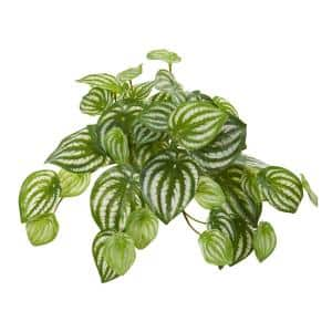 Indoor 11 Watermelon Peperomia Hanging Artificial Bush Plant (Set of 12)
