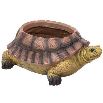 11 in. Polyresin Teddy The Tortoise Indoor/Outdoor Garden Planter