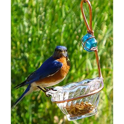 Copper Blue Single Cup Bird Seed Feeder