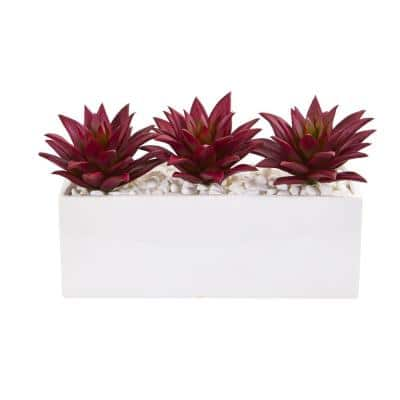 Indoor 8 in. Triple Agave Succulent Artificial Plant in White Vase