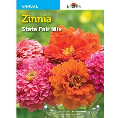 Zinnia State Fair Mix Seed