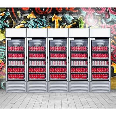 12.5 cu. ft Single Door Commercial Refrigerator Beverage Cooler in Gray