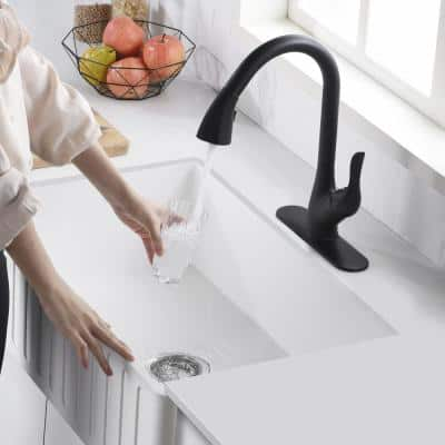 Accent Series Single-Handle Pull-Down Sprayer Kitchen Faucet in Matte Black