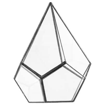 Geometric 5 in. x 8 in. Glass Cone Terrarium