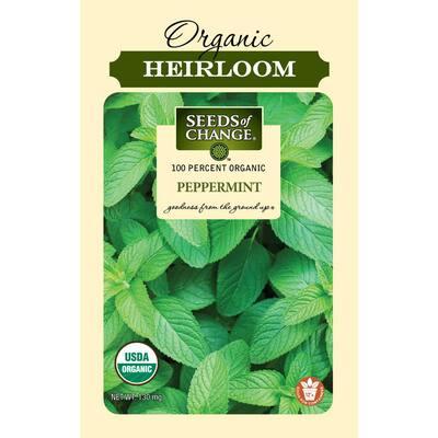 Organic Peppermint Seeds