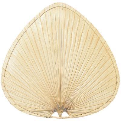 Natural Palm Fan Blades (5-Pack)