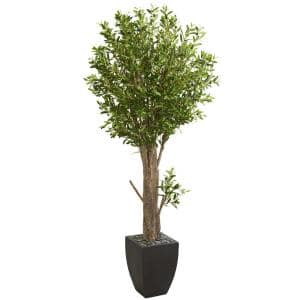 Indoor 6.5 ft. Olive Artificial Tree in Black Planter