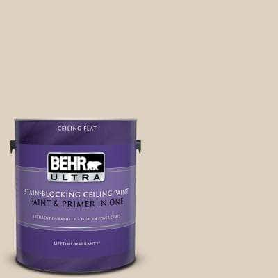 1 gal. #PPU7-10 Roman Plaster Ceiling Flat Interior Paint and Primer in One