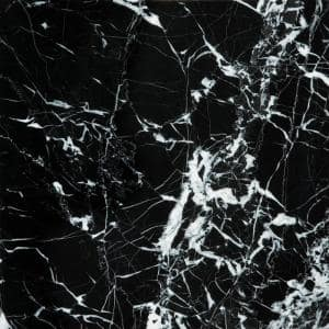 Marble Black and White Polished 12.01 in. x 12.01 in. Marble Floor and Wall Tile (1 sq. ft.)