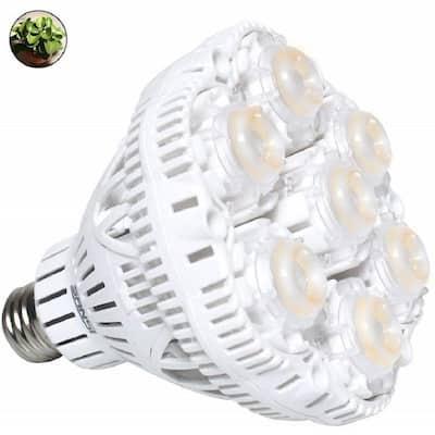 36-Watt E26 Full Spectrum LED Grow Light Bulb for Indoor Garden Greenhouse, Sunlight White