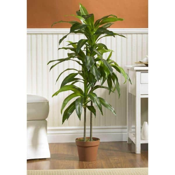 Nearly Natural Real Touch 48 In H Green Dracaena Silk Plant 6585 The Home Depot