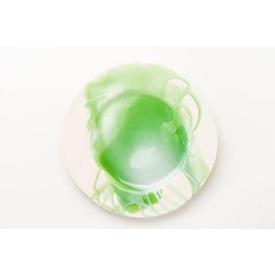 Splash Green & White Dinner Plate, Set of 4