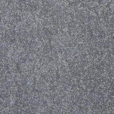 8 in. x 8 in. Texture Carpet Sample - Alpine - Color Brushed Nickel