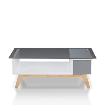 Dougray 48 in. Gray/White/Brown Large Rectangle Glass Coffee Table with Shelf