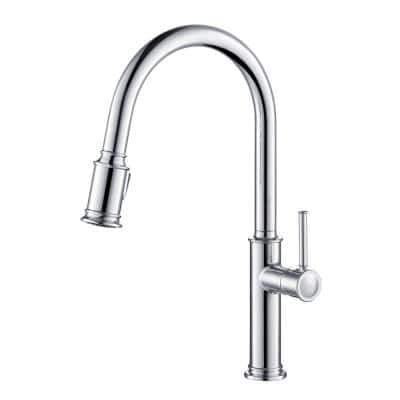Sellette Single-Handle Pull-Down Sprayer Kitchen Faucet with Dual Function Sprayhead in Chrome