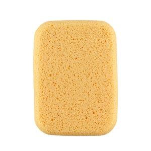 All Purpose Sponge