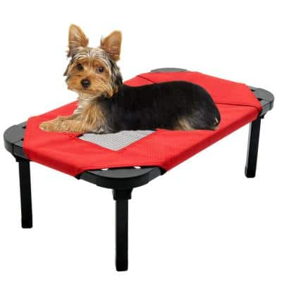 Extra Small 22 in. Red Elevated Pet Bed Comfort Cot