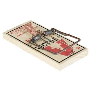 Metal Pedal Rat Snap Trap (12-Pack)