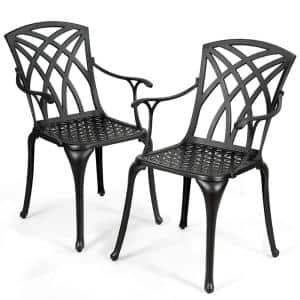 Cast Aluminum Patio Outdoor Dining Chair (2-Pack)