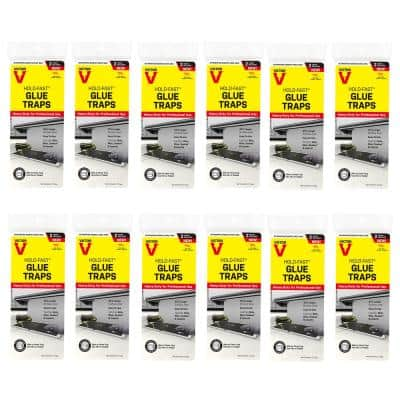 Hold-Fast Rat Glue Traps (24-Count)