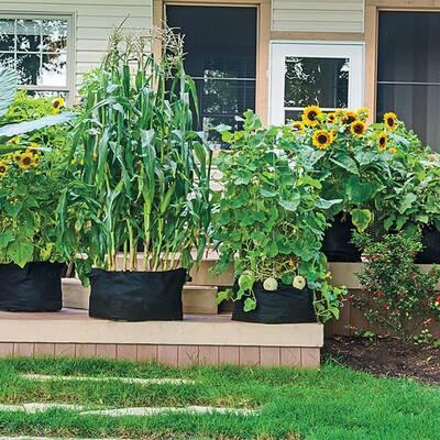10 Gal. Capacity Expandable Patio Grow Tub