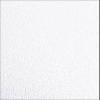 Greenhouse/Grow Room Absolute White Ceramic Commercial/Residential Vinyl Sheet Flooring 8.5 ft. W x 22 ft. L