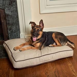 Sadie Medium Beige Olefin Pet Bed