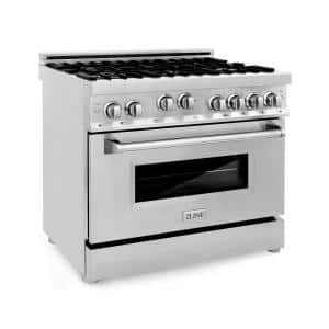 36 in. 4.6 cu. ft. Gas Range with Convection Gas Oven in Stainless Steel