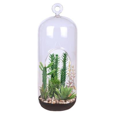 Carefree Capsule Clear Glass Hanging Succulent Indoor Garden Terrarium Indoor Garden Seed Starter Kit