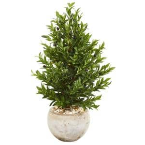 Indoor/Outdoor 3-Ft. Olive Cone Topiary Artificial Tree in Sand Stone Planter