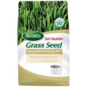 40 lbs. Southern Gold Grass Seed