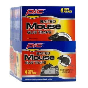 Baited Mouse Glue Traps (48-Pack)