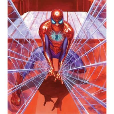 Multi-Colored Marvel Alex Ross Spiderman Tapestry