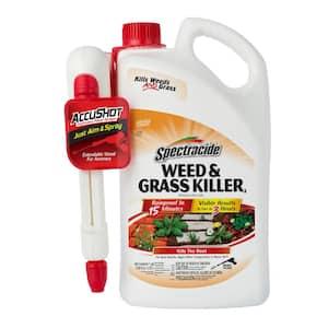 Weed and Grass Killer 1 gal. AccuShot Sprayer