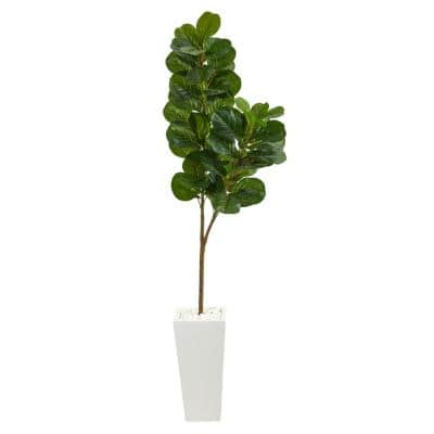 6 ft. Fiddle Leaf Fig Artificial Tree in Tall White Planter