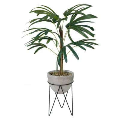 3.15 ft. Palm in Cement Planter on Metal Stand